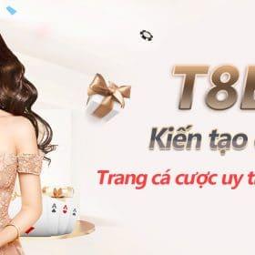 giới thiệu t8bet